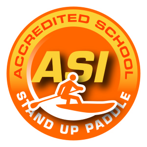 asi_acc_school_logo_sup_highres